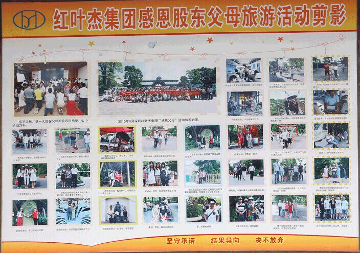 2014年红叶杰科技企业股东-文化